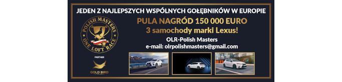 Wspólny Gołębnik OLR Polish Masters